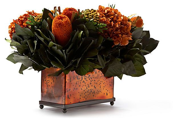 """14"""" Brunia & Hydrangea in Pot, Rust In the colors of the season, this selection of banksia, brunia and hydrangea make a stunning statement on any table. An antiqued copper glass container completes this autumnal look.  Each of Bougainvillea's preserved floral arrangements is hand-assembled using ingredients entirely sourced from nature, and its beautiful, organic look will last for years.  Place indoors, away from direct sunlight and excess humidity.   - More Great Ideas from DriedDecor.com"""