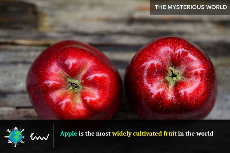 #fruits #apple #facts
