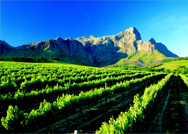 Franschhoek Mountain and vineyards - South Africa- home of La Clé des Montagnes- 4 luxurious villas on a working wine farm