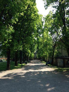 Un parco, un'isola pacifica immersa nella movida milanese…è possibile?  https://fuoriloco.wordpress.com/ #fuoriloco #milano #italy #italia #parco