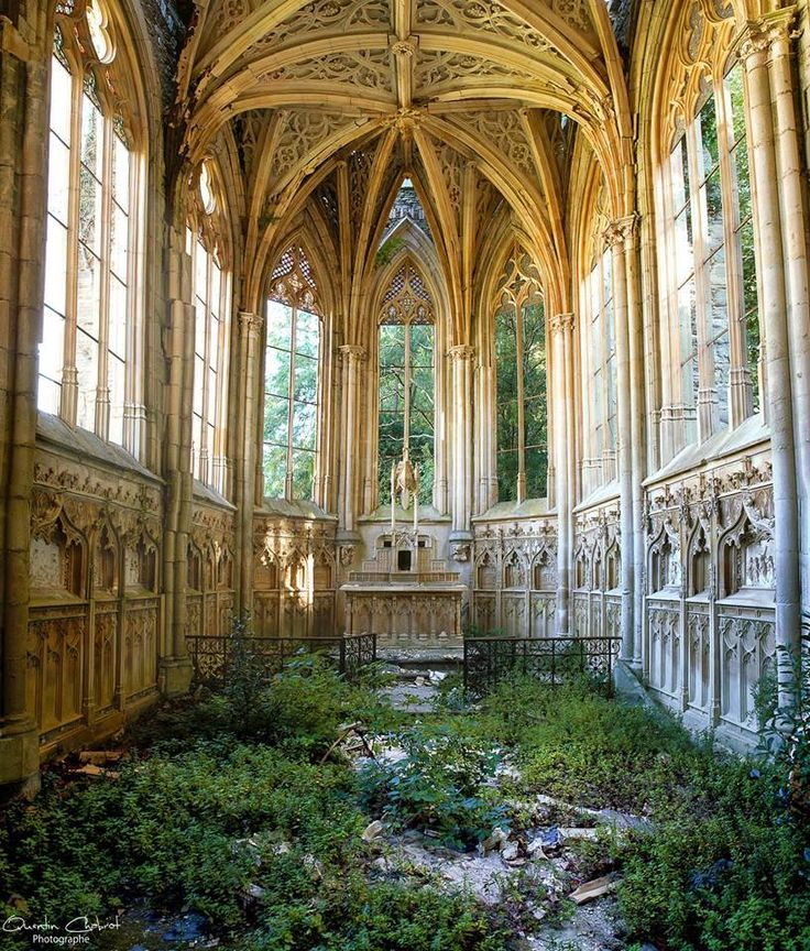 Nature Taking Back A Church Natural ArchitectureHistorical