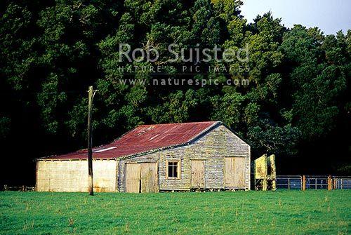 Old farm woolshed near Whataroa, Whataroa, Westland District, West Coast Region, New Zealand (NZ).