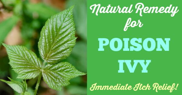 Natural Remedy for Poison Ivy – Immediate Itch Relief! Works on Bites, Stings and Rashes, too!