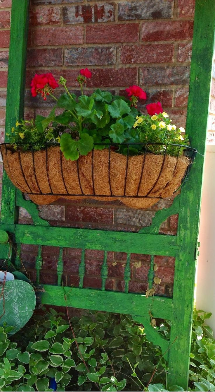 1000 Images About Grow Container Gardens 1 On Pinterest