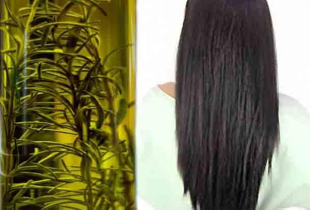 En este post te contamos como hacer suavizante de aceite de romero en tu casa, veras que tu pelo luce totalmente natural y que te va a costar muy poco dinero y poco tiempo de hacerlo. Solo tienes que seguir estas sencillas instrucciones: Ingredientes: media taza de romero seco media taza de aceite de girasol …