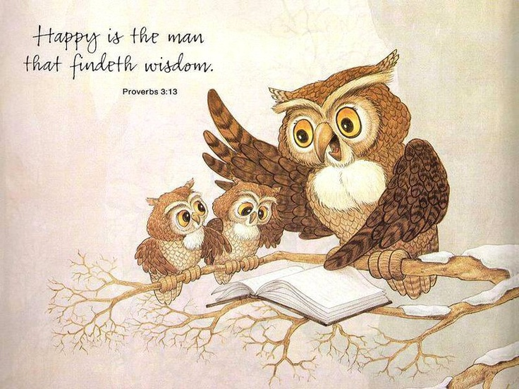 Proverbs 3:13 (KJV) Happy is the man that findeth wisdom, and the man that getteth understanding.