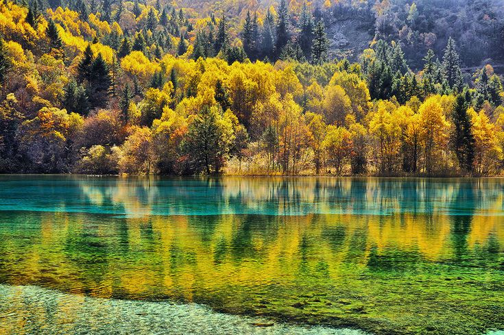 Multicolor reflection by Jumrus Leartcharoenyong, via 500px
