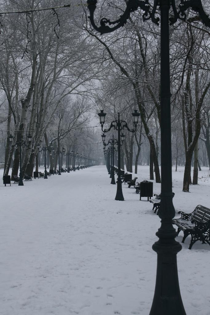 Un pic langa Bucuresti, intr-o plimbare spre Palatul Mogosoaia.    http://pierdutinbucuresti.wordpress.com