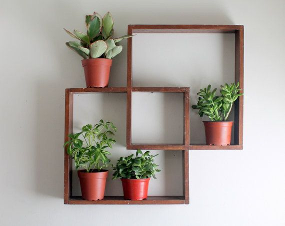 Geometric shelves with plants on them - Possibility for Reception Area