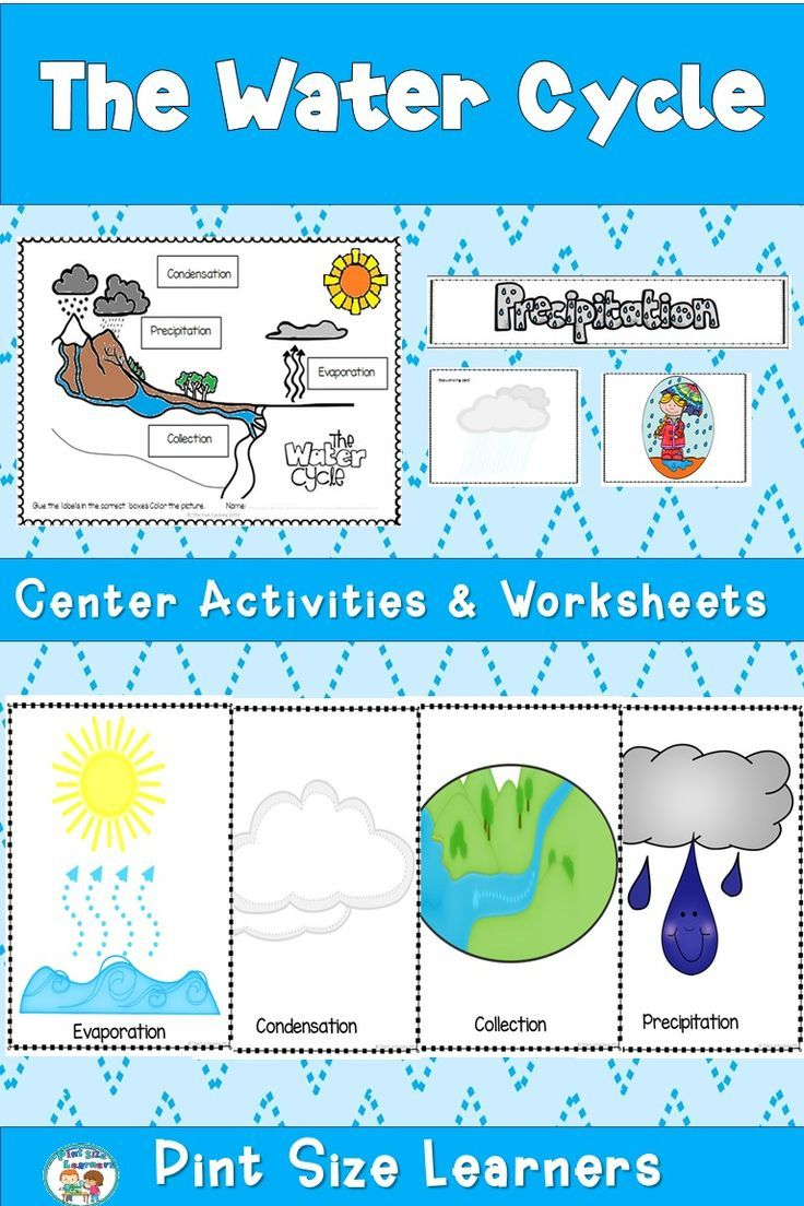 This Water Cycle Unit For First And Second Grade Students Explains Evaporation Condensation Precipit Water Cycle Activities Water Cycle Worksheet Water Cycle