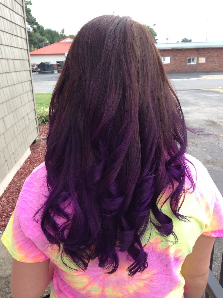 Pravana color: chocolate brown and vivid purple ombré ...