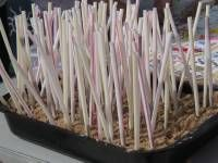 Simple Fundraising Idea - Lucky straw - does your ticket contain a prize?