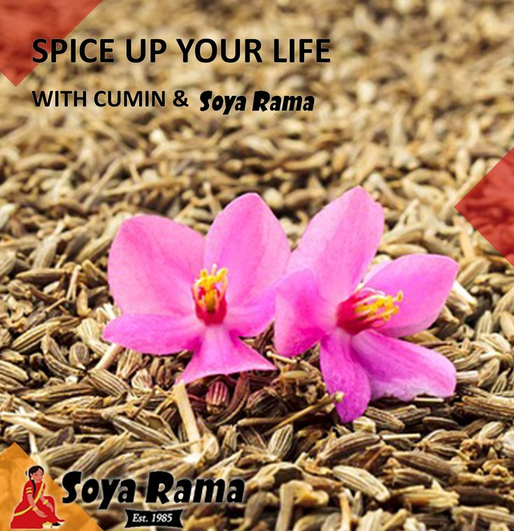 hmmm Cumin! ... With a history that spans over 5000 years this delicious herb is quite simply nutritious, offering a wide range of beneficial attributes from aiding digestion to being anti-aging, you cant go wrong with Cumin & Soya Rama... #healthy2018 #spices #nutritious