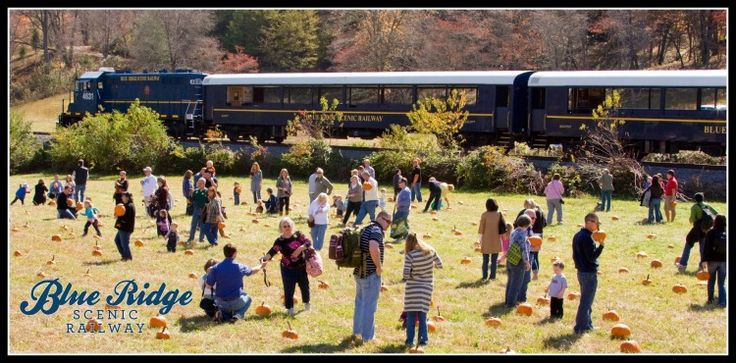 Pumpkin Express 2015 | October 25  Join us for a trip to Farmer Brown's field where children and adults can pick out a souvenir pumpkin, greet Farmer Brown, and then return to Blue Ridge. ***Please use the DROP DOWN BOX for your CHOICE OF CAR TYPE. Please take note of the type of car at the time of choosing your car.**Cars are assigned- seats are not. Seats are sold First Come First Serve. *Pricing below does not reflect taxes and online ticketing fees.