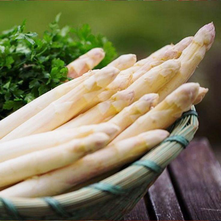 asparagi bianchi verdi differenza