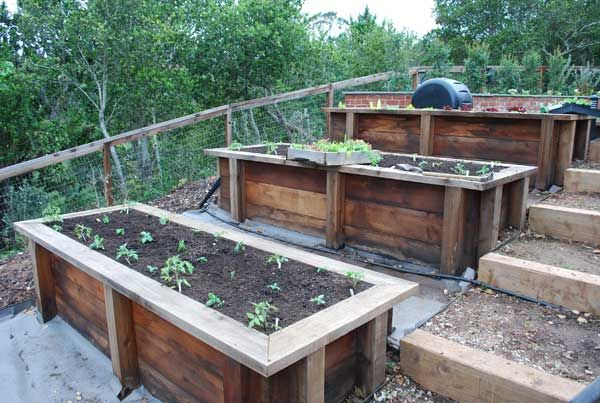 17 Best images about Raised Garden Bed Examples on