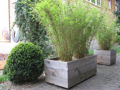 pflanztrog f r bambus bestseller shop. Black Bedroom Furniture Sets. Home Design Ideas