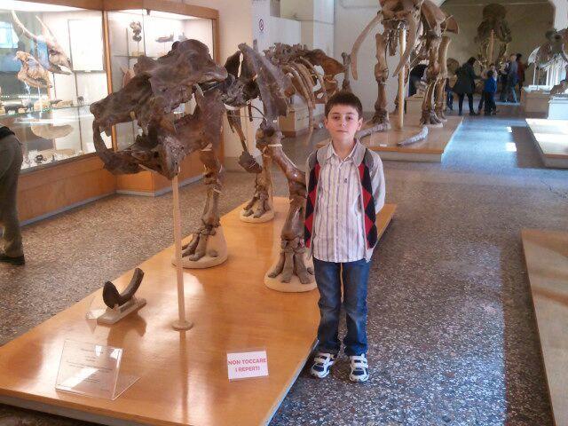 Museo di Storia Naturale, Università di Firenze, Toscana #museumschool