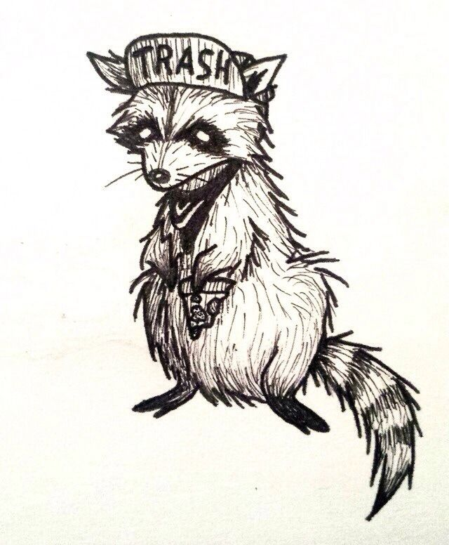 Trash Raccoon. Tattoo Idea. Punk rock. So cute!