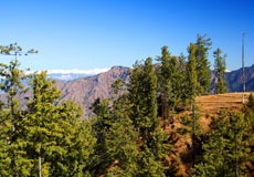 Enjoy Your Holiday in Colorful and Natural Environment at Shimla Cottages at Best Prices.