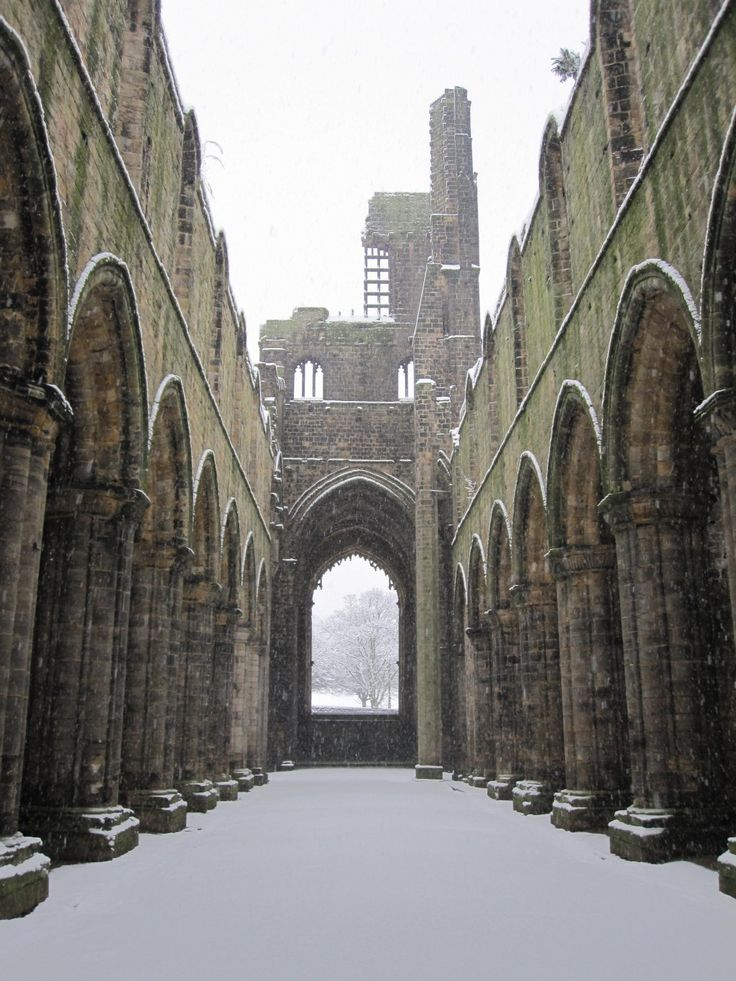 A White Covering at Kirkstall Abbey - Leeds - England   Hopefully where I will be spending my time studying abroad in 3rd year :)