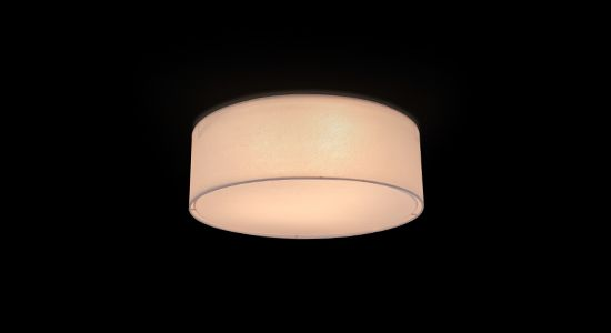 Disk Ceiling Light