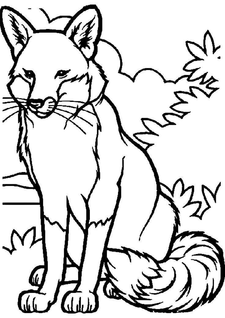 Malvorlage Waldtiere Kostenlos - ein Bild zeichnen