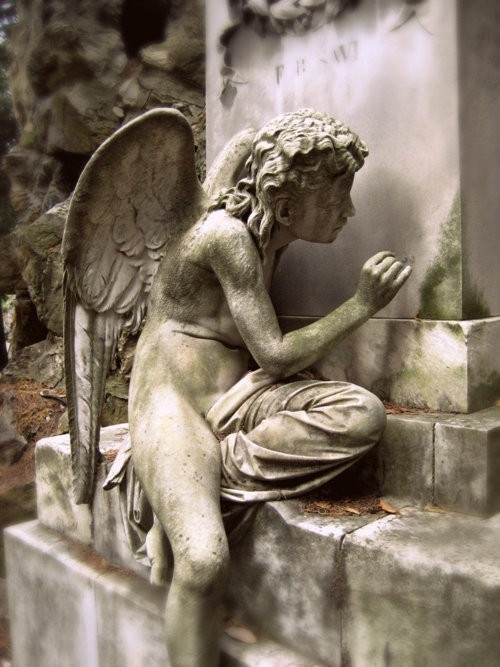 .: Stones Angel, Amazing Angel, Angel Sculpture, Wings, Art, Guardians Angel, Graves Beautiful, Angel Statues, Gardens Angel