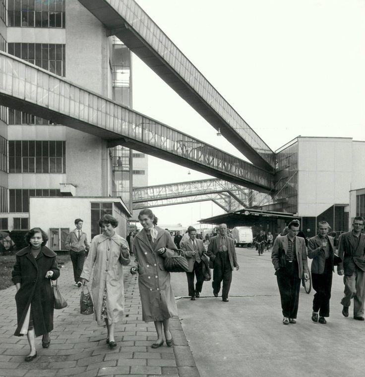 De VAN NELLE fabriek, toen er nog koffie, thee en tabak verwerkt werd. Een echt Rotterdams merk destijds.