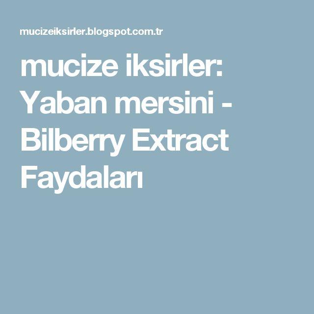 mucize iksirler: Yaban mersini - Bilberry Extract Faydaları