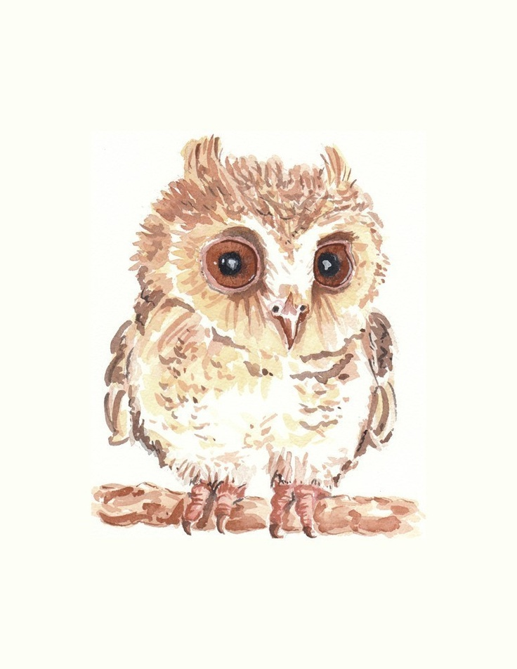 1000+ images about Owl paintings on Pinterest ...