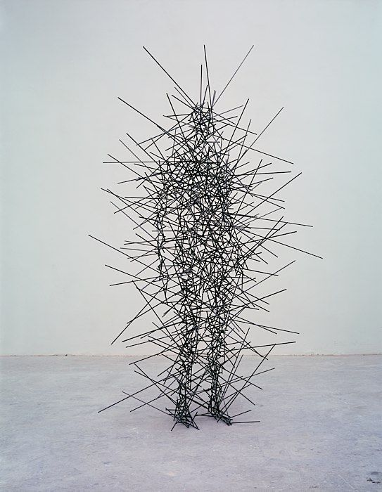 QUANTUM CLOUD IX, 1999 by Antony Gormley                                                                                                                                                                                 More
