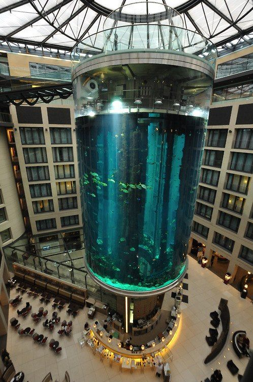 Giant Aquarium - AquaDom in   Berlin, Germany  The AquaDom in Berlin, Germany, is a 25 metre tall cylindrical acrylic glass aquarium with built-in transparent elevator. It is located at the Radisson Blu Hotel in Berlin-Mitte. The DomAquarée complex also contains a hotel, offices, a restaurant, and the aquarium Sea Life Centre.