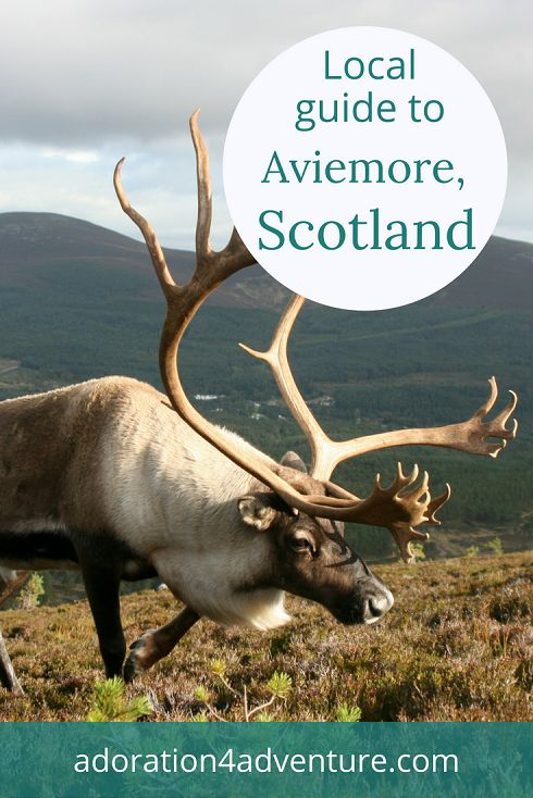 Adoration 4 adventure's local guide for visitors to Aviemore, Scotland including top places to eat, drink, stay, and how to get around on a budget.
