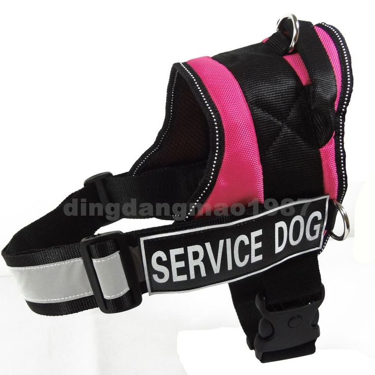 NEW Service Dog Harness Vest Comfort Padded Dog Vest Removable Velcro 2 Patches #Unbranded