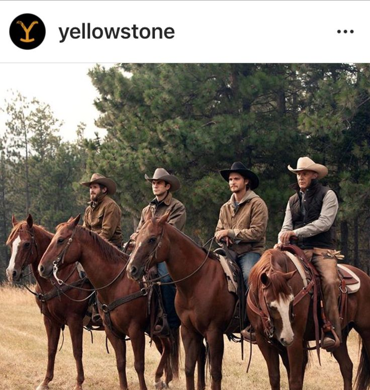 Pin by Kathy Hopkins on Yellowstone The Series