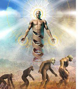 44. Como conclusión me queda decir que la teoría de la evolución tiene muchas tesis, unas evolucionistas y otras antievolucionistas donde la evolución fue por un propósito u objetivo divino. Gracias a grandes pensadores y científicos, como Darwin, aprendimos que se puede el ver el mundo de distintas maneras y sobre todo de donde provenimos; de como ocurrió todo y de como una especie puede evolucionar hasta conseguir dominar el mundo, ya sea por selección natural o por un plan fijado.