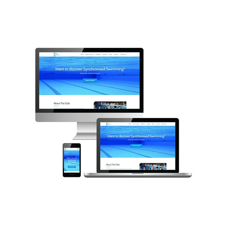 Website Development - WebKingdom