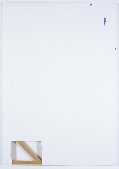 DVG birds with cut corner, 2006  Oil, wax and graphite on canvas  182.5 x 127cm: Dvg Birds, Canvas 182 5, Richard Aldrich, Cut Corner