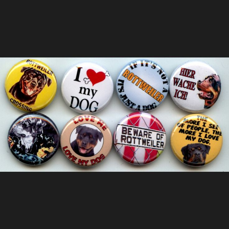 I Love my Rottweiler Rotty pet Dog breed pinback button set by Yesware11 on Etsy.. Click for details!