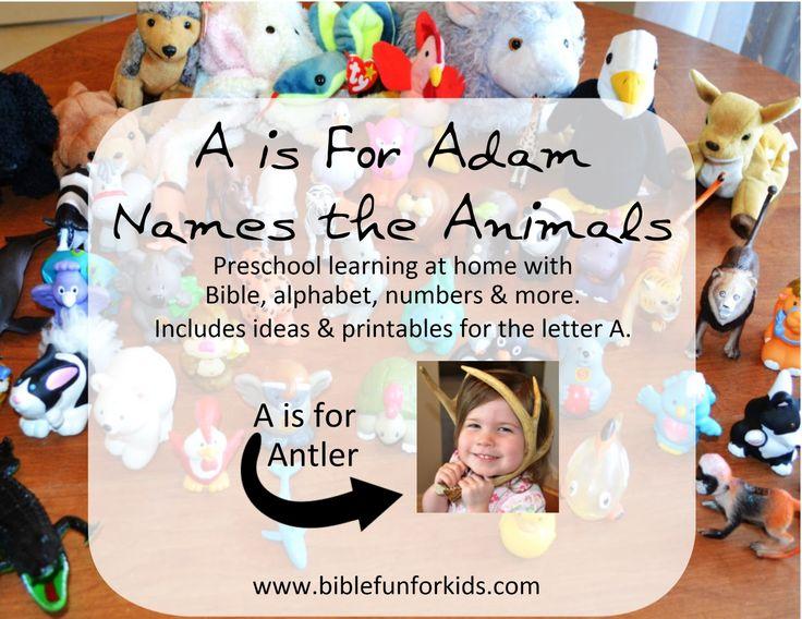 Preschool Alphabet: A is for Adam, apples & more #Biblefun