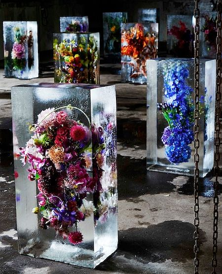 Beautiful flowers carefully frozen in cold water for display and preservation -  Creative art installation by Japanese floral shop owner Azuma Makoto - http://www.toxel.com/inspiration/2015/02/15/frozen-flowers/