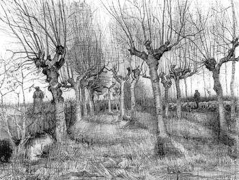 Tree drawing by Van Gogh