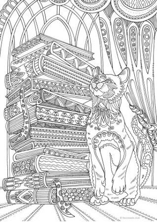 Cat and Books colouring page
