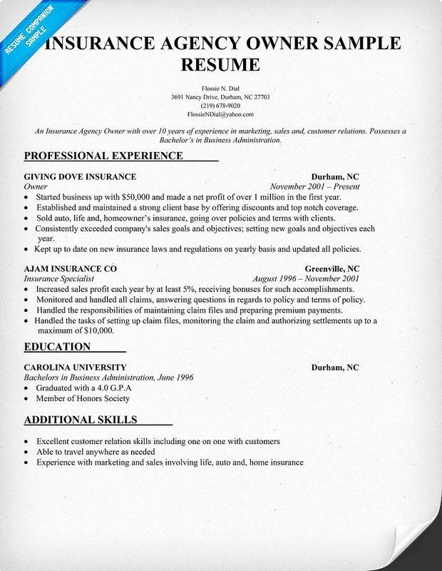23 Insurance Agent Resume Examples In 2020 Job Resume Samples