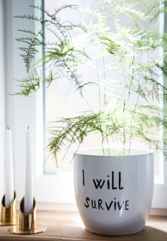 Personalise a plain pot with a marker pen or paint | #IKEAIDEAS #customise
