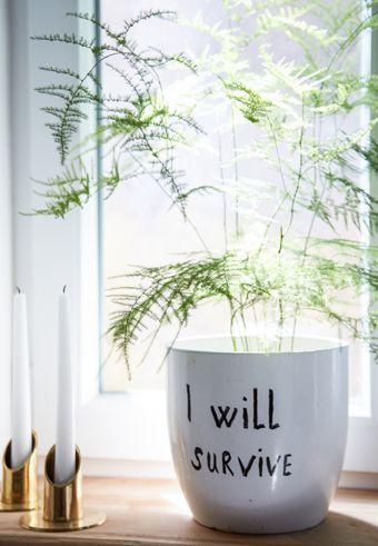 Envie de donner un nouveau look à votre déco sans dépenser une fortune ? Testez ces idées d'Anikó, blogueuse déco.
