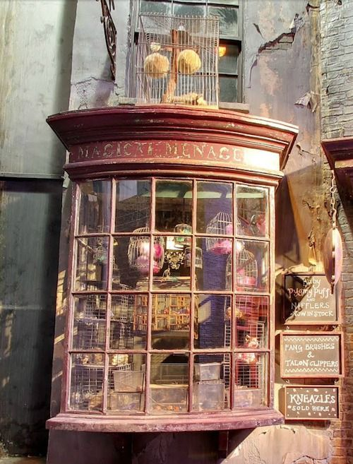 Diagon Alley - Magical Menagerie sells pets and pet supplies. They stock Pygmy Puffs, Puffskeins (Pygmy Puffs-mini size), Nifflers (treasure hunters that love shiny things) and Kneazles for sale.