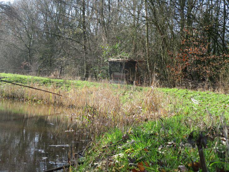 Ons vogelkijkhutje bij de Snelle Loop voor nog meer natuurbeleving.  www.eco-touristfarm.com