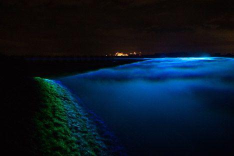 Waterlicht by Daan Roosegaarde